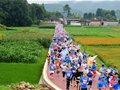 奔跑在高黎贡山脚下的花海赛道 脚步根本停不下来